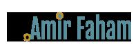 Dr Amir Faham